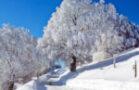 Skigebiete, u. a. Feldberg