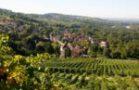 Ortsansicht_ Bad Bellingen
